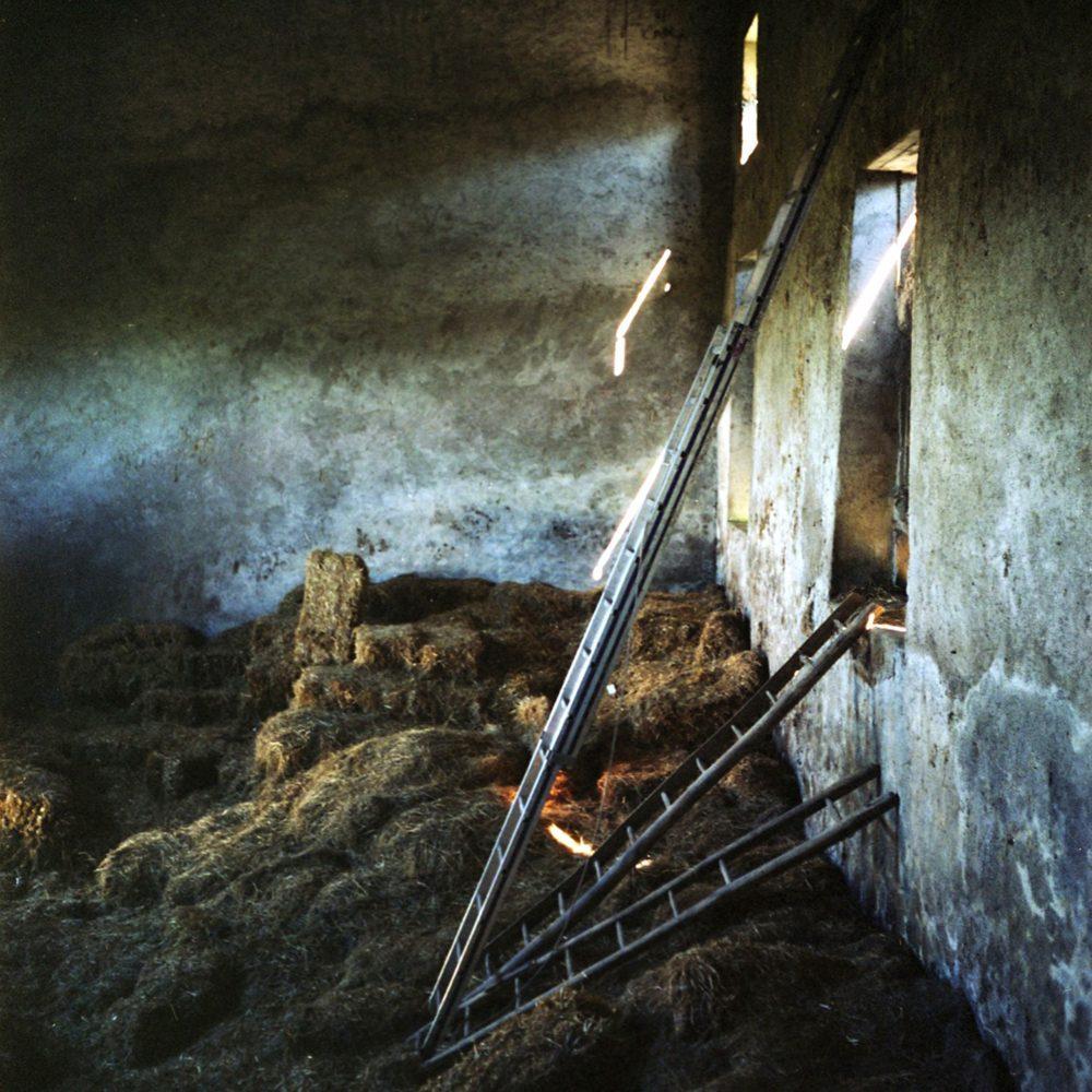 "Dianne Bos, ""La Porte, Barn Ladders"", 2012, CPrint - Newzones Gallery, Calgary"