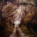 "John Folsom, ""Cuberland Island Parallel Trail"", 2011 - Newzones Gallery, Calgary"