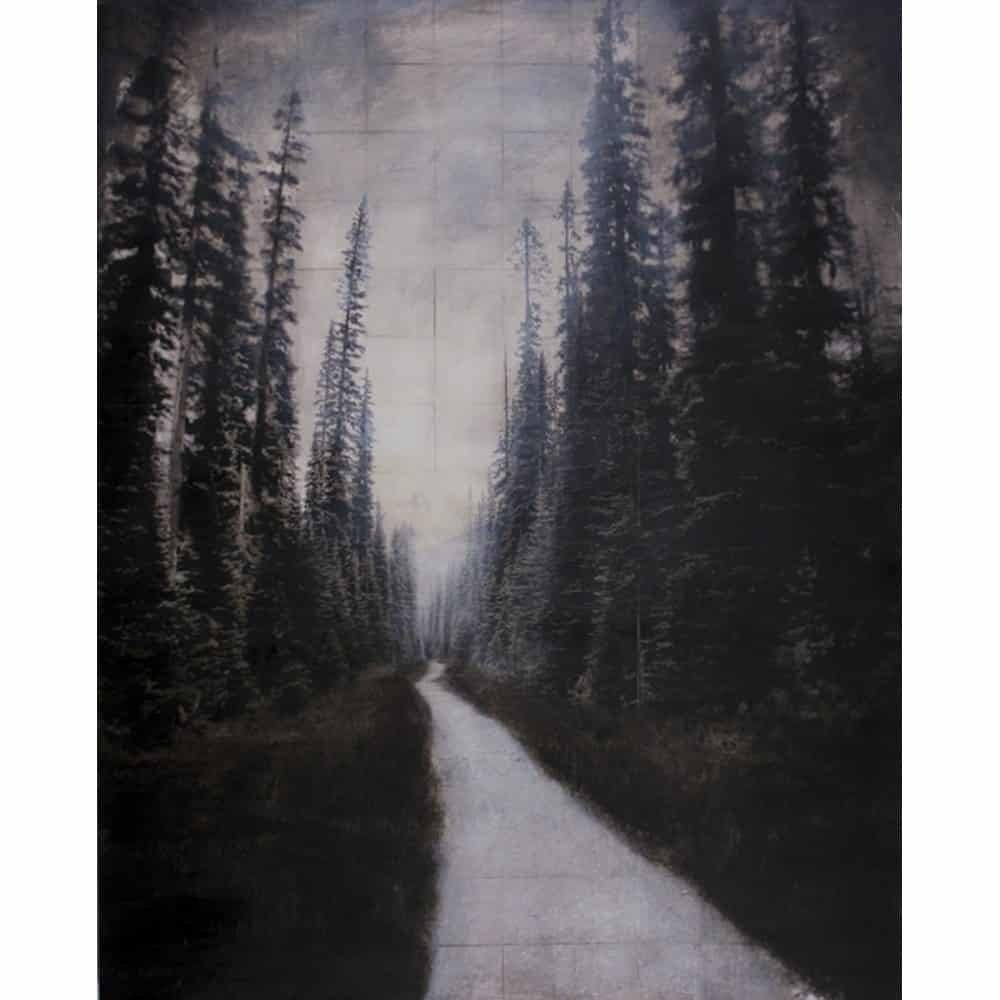 "John Folsom, ""Trail of Absolutes"", 2014 - Newzones Gallery, Calgary"