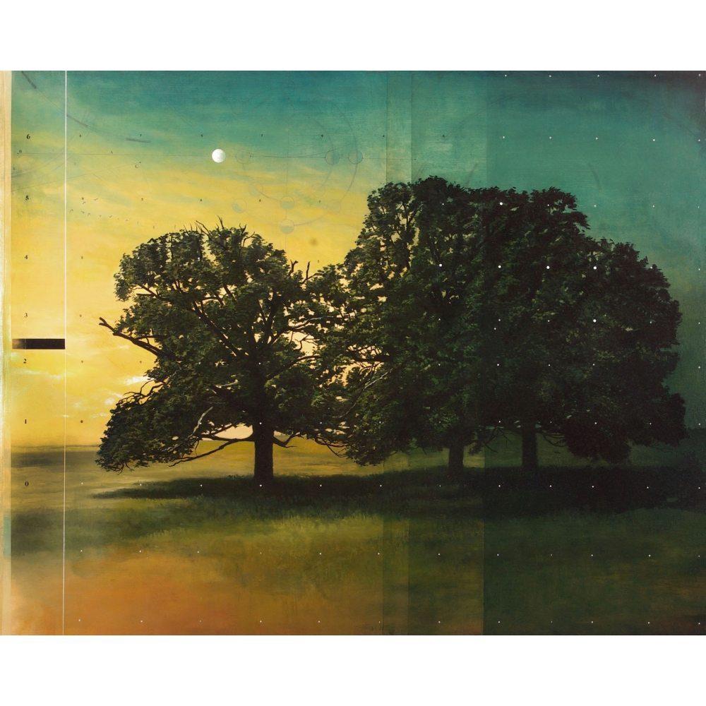 """Don Pollack, """"Apollo"""", 2011 - Newzones Gallery, Calgary"""