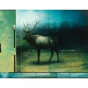 "Don Pollack, ""We are not enemies"", 2010 - Newzones Gallery, Calgary"