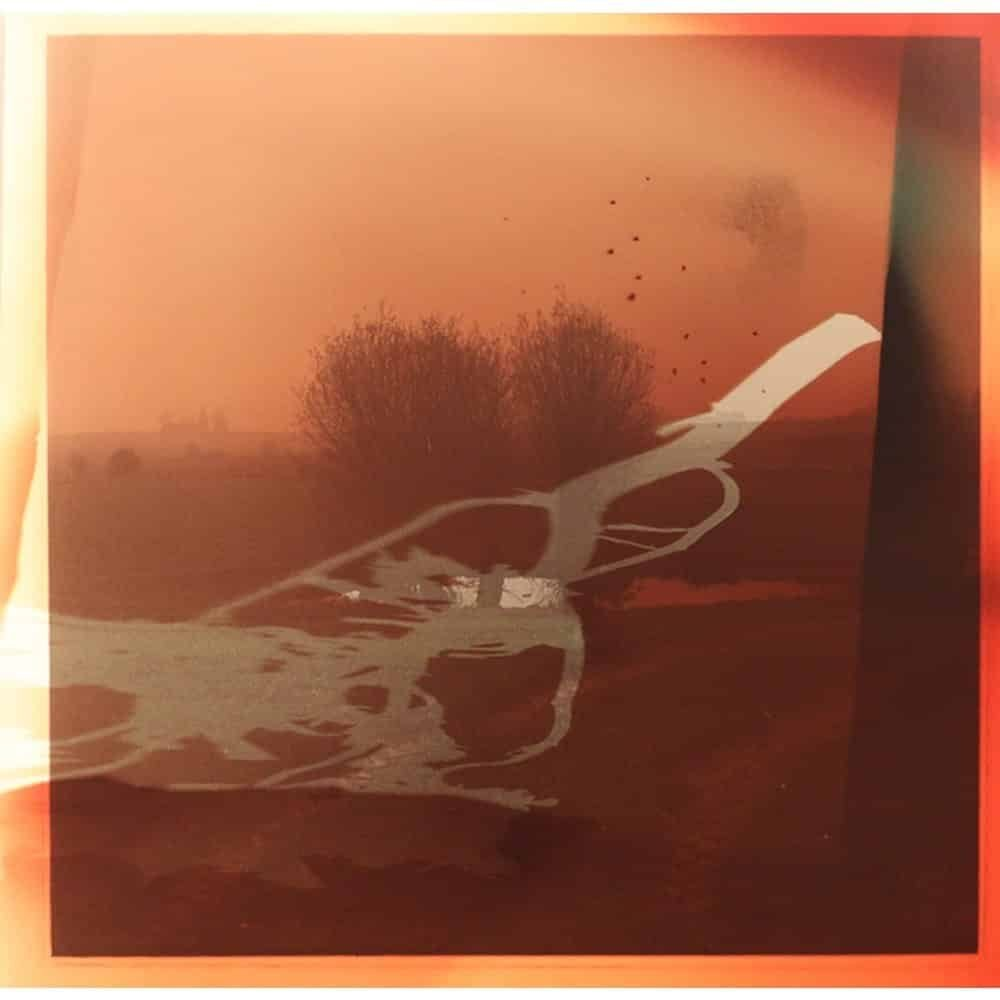 """Dianne Bos, """"Flanders Landscape Bomb Pond and Branch"""", 2014, CPrint - Newzones Gallery, Calgary"""