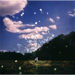 "Dianne Bos, ""White Horse Hill 62, Flanders Fields, Belgium"", 2014 - Newzones Gallery, Calgary"