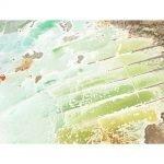 """Joshua Jensen-Nagle, """"Stealing Beauty From The Sea"""", 2017, Photo/Plexi - Newzones Gallery, Calgary"""